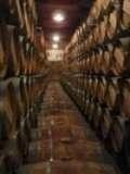 Abogados en La Rioja Consulta Gratis